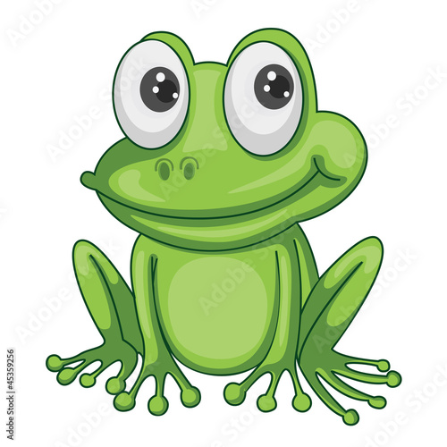 Photo  a frog