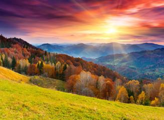 Fototapeta Inspiracje na jesień autumn