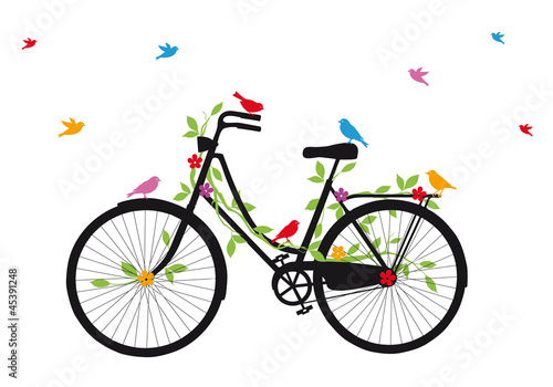 Fotografie, Obraz  old bicycle with birds, vector