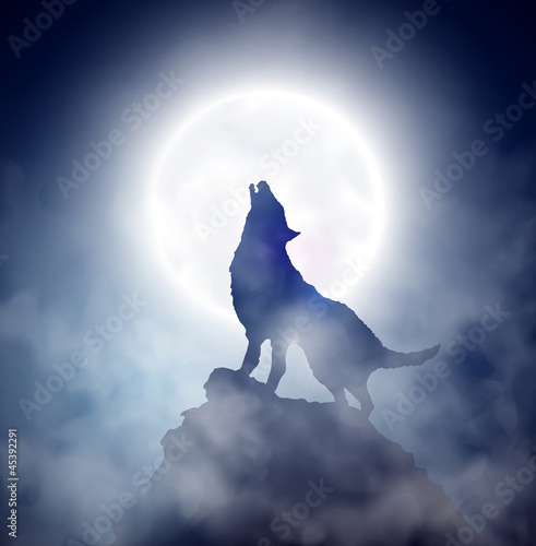 Foto  Howling wolf