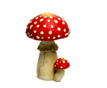 Mushroom Red And White