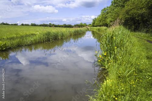 Fotografia river