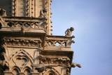 Fototapeta Paryż - Notre Dame