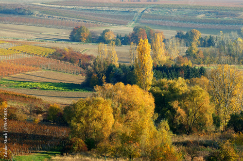 Stickers pour portes Orange eclat Autumn country view
