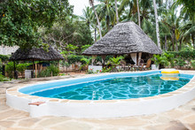 Swimming Pool In African Garden