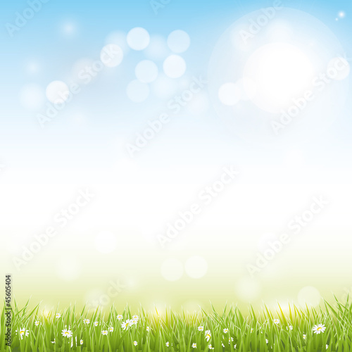 Fotografie, Obraz  Spring vector background