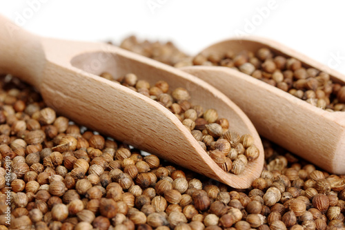 Photo Stands Herbs 2 Heap coriander seeds in wooden spoon
