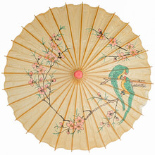 Oriental Umbrella Isolated