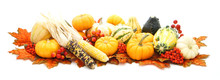 Arrangement Of Autumn Gourds, Pumpkins, Corn And Red Leaves