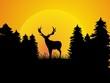 huntsman - hunter - deer - poacher - wild
