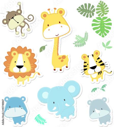 slodkie-zwierzeta-safari