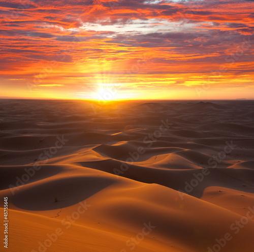 Poster de jardin Desert de sable Desert on sunset