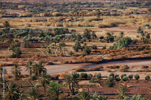 Moroccan fields