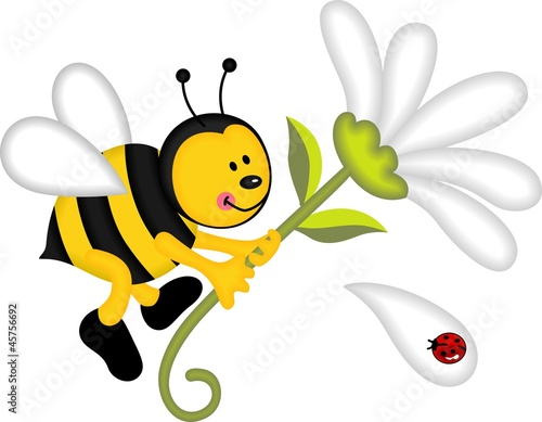 Foto op Canvas Lieveheersbeestjes Bee flying holding flower