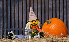 Scarecrow And Pumpkin On The Bench