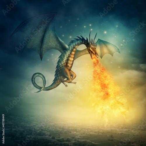 Photo  Dragon