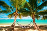Hängematten unter Palmen an Tropischem Strand von  Koh Samui