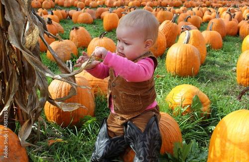 Pretty little cowgirl playing with cornstalks Canvas-taulu