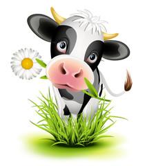 Holštajnska krava u travi