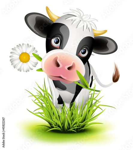 Poster de jardin Ferme Holstein cow in grass