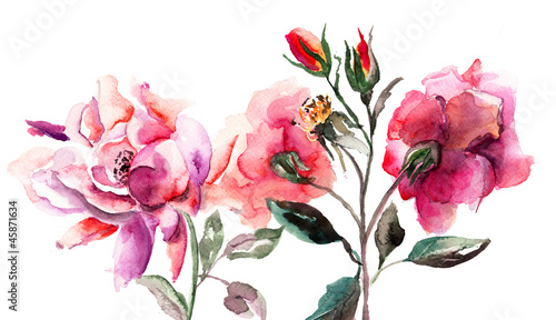 Obraz w ramie Beautiful Roses flowers, Watercolor painting