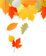 Leaves autumn vector background