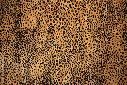 Foto op Aluminium Luipaard Animal Print Background