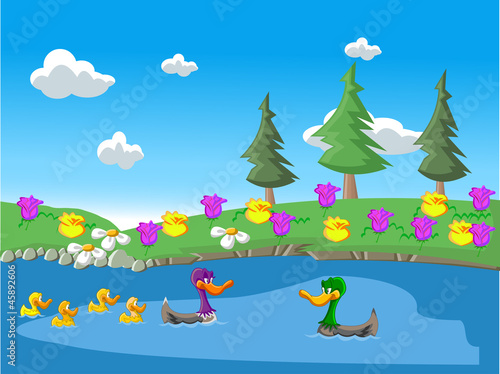 Fotobehang Rivier, meer Nature landscape with ducks in the lake
