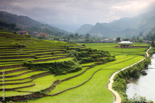 Recess Fitting Rice fields Rice paddy field terrace in Sapa, Vietnam