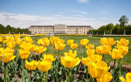 Montage in der Fensternische Wien Schonbrunn Palace Gardens at Vienna, Austria