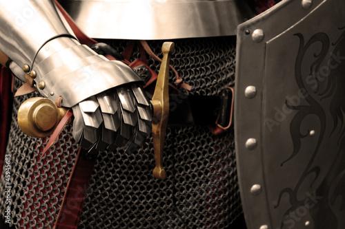 Fotomural knight