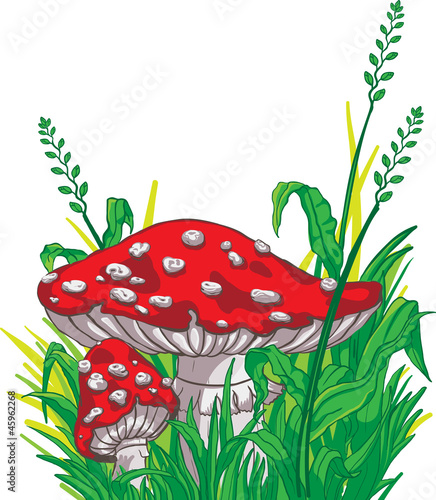 Cadres-photo bureau Monde magique Cartoon style amanita mushrooms and grass