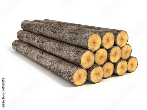 Fotografia  stacked tree logs
