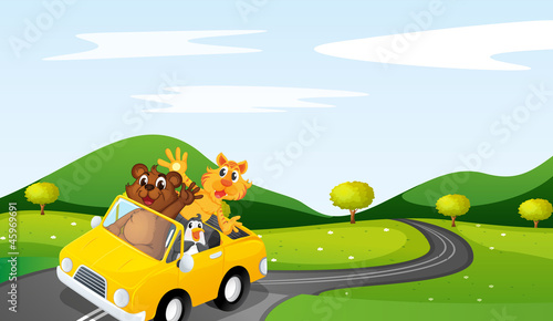 Foto op Canvas Cars cat, tiger and penguin