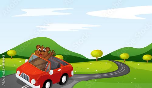 Foto op Canvas Cars a tiger cub in a car