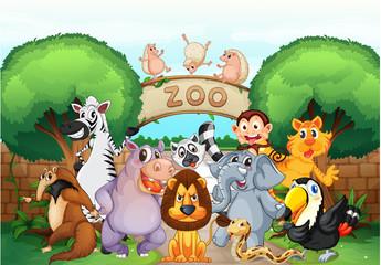 Obraz na płótnie Canvas zoo and animals