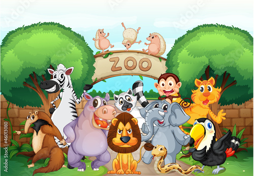 Poster de jardin Zoo zoo and animals