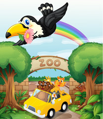 Obraz na płótnie Canvas a zoo and the animals