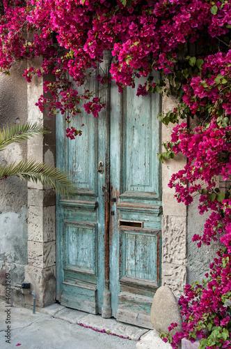stare-drewniane-drzwi-z-bougainvillea-na-cyprze