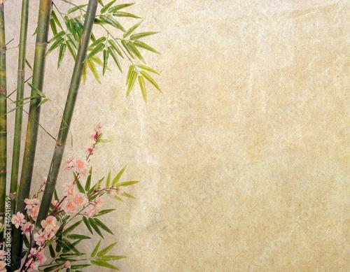bambus-na-starym-grunge-tekstury-papieru-tle
