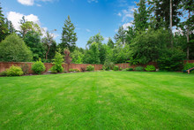 Green Large Fenced Backyard Wi...