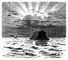 Noahs Ark - Arche De Noé