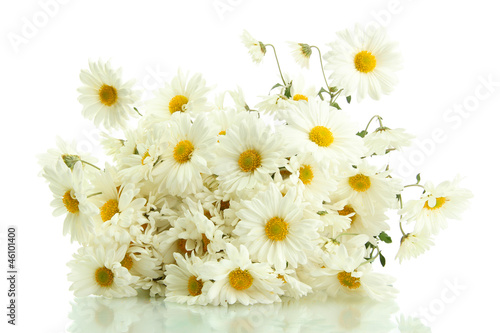 In de dag Madeliefjes bouquet of beautiful daisies flowers, isolated on white