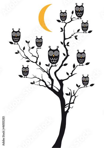 sowy-siedzi-na-drzewie-wektor