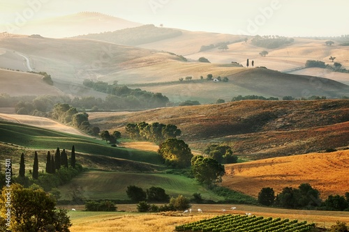 Deurstickers Toscane Italian countryside in Tuscany