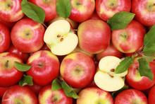 Rote Äpfel Mit Blättern