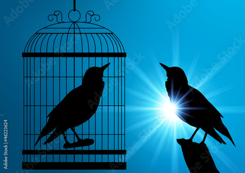 Poster Birds in cages Oiseaux_Soleil_Rayons