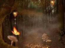 Enchanted Nature Series - Autumnal Pathway