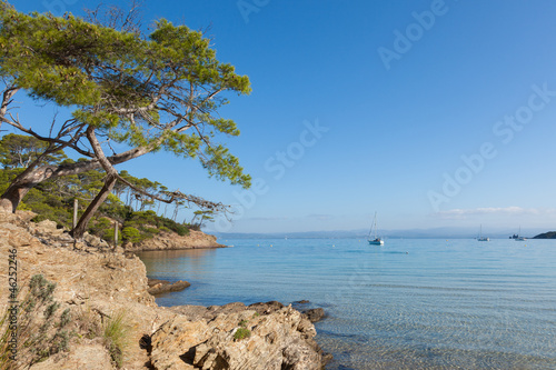 Fototapeta Porquerolles island in France obraz na płótnie