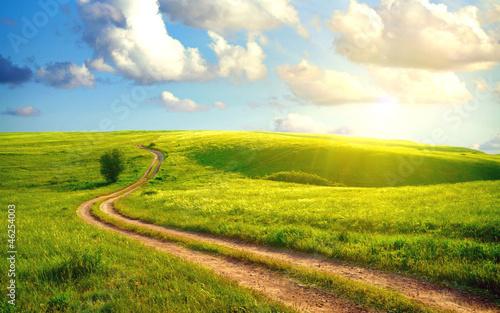 Fotografía  The path in the field under the sun